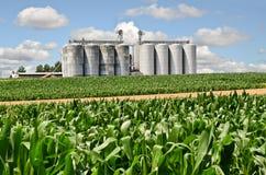 silo's Stock Afbeelding