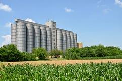 silo's Stock Foto