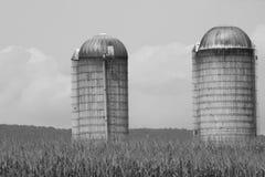 Silo's in de zomer van Pennsylvania van het graangebied van 2017 2 Stock Afbeeldingen