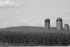 Silo's in de zomer van Pennsylvania van het graangebied van 2017 9 Royalty-vrije Stock Afbeeldingen