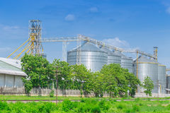 Silo structure for storing bulk dried seed factory Royalty Free Stock Images