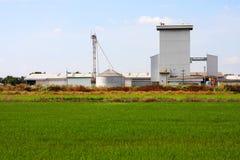 Silo sul giacimento del riso, Tailandia. Fotografie Stock Libere da Diritti