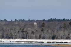 Silo in trees Royalty Free Stock Photography