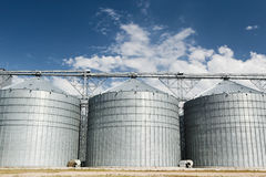 Silos. Three huge silos for grain Stock Photography