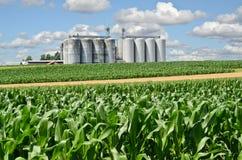 silos Photo libre de droits