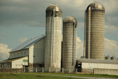 Silos. This is a shot of a white barn and 3 silos Stock Photos