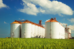 Silos agrícolas debajo del cielo azul, en los campos Imágenes de archivo libres de regalías