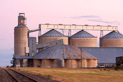 Silos Bathed In Pink After Sunset Light Royalty Free Stock Images