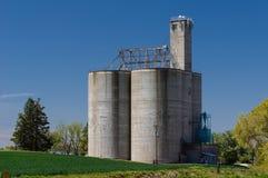 Silos concreto di stoccaggio del grano con l'elevatore Immagini Stock