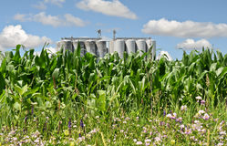 Silos Stock Photos
