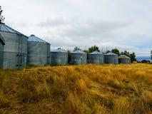 Silos de grano en Montana septentrional imágenes de archivo libres de regalías