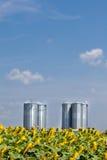 Silos de la agricultura debajo del cielo azul Imagen de archivo libre de regalías