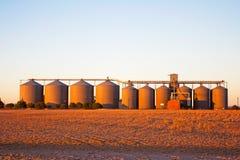 Silos de stockage de grain dans la lumière de début de la matinée images stock