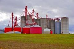 Silos del almacenamiento de la cosecha de la granja Fotografía de archivo libre de regalías