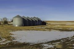 Silos di grano in Alberta congelata Fotografie Stock