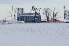 Silos di grano durante l'inverno Immagini Stock