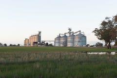 Silos di grano NSW Immagini Stock Libere da Diritti