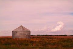 Silos di immagazzinamento del grano Fotografie Stock