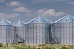 Silos di stoccaggio di agricoltura Fotografia Stock