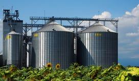 Silos do cereal na frente do campo dos girassóis Fotografia de Stock Royalty Free