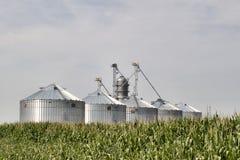 Silos en el maíz Fotos de archivo libres de regalías