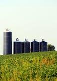 Silos en un campo de la soja en granja Imagen de archivo
