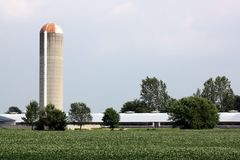Silos and Farming Royalty Free Stock Image