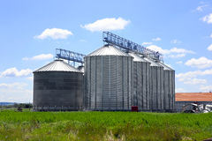 Silos in the field Royalty Free Stock Image