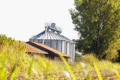 Silos industriale per agricoltura Fotografia Stock
