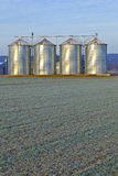 Silos in the middle of a field Stock Images