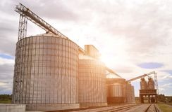 silos moderno per la conservazione del raccolto di grano Immagini Stock