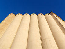 Silos. Old grain silos in warm evening light against clear blue sky Stock Photo