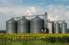 Silos per la conservazione del grano Immagini Stock Libere da Diritti