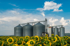 Silos per la conservazione del grano Fotografia Stock