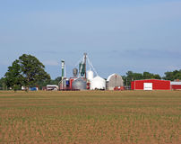 Silos and red barns Stock Image