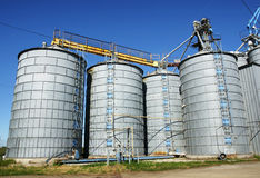 Silos and sky. Agriculture: Group of silos filled with cereal grain against blue sky Stock Image