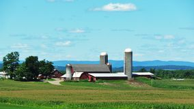 Silos in Summer Stock Photography