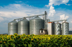 Silos. Warehouse for storing grain. Royalty Free Stock Images
