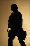 Silouette dell'ufficiale dello SCHIAFFO nella nebbia Fotografie Stock Libere da Diritti
