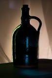 Silouette della bottiglia Immagine Stock