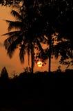 Silouettes al tramonto Immagine Stock Libera da Diritti
