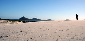 Silouhette nas dunas Imagens de Stock Royalty Free