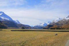 Silsersee. Los lugares de Nietzsche Imagen de archivo