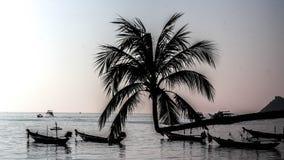 Siluate żółwia wyspa Suratthani Tajlandia zdjęcie royalty free
