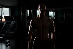 Siluet Portrait Of A PMuscular Man. Silhouette Man Standing Strong In The Gym And Flexing Muscles Royalty Free Stock Photography