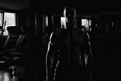 Siluet Portrait Of A PMuscular Man. Silhouette Man Standing Strong In The Gym And Flexing Muscles Stock Photography