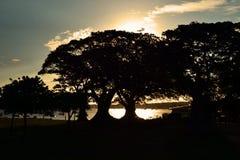 Silueta Imagen de archivo libre de regalías