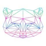 Silueta abstracta poligonal del mapache dibujada en un li continuo Imagenes de archivo