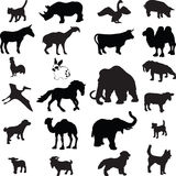 Silueta animal   Foto de archivo libre de regalías