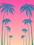 Silueta azul de las palmeras en un fondo rosado Vector el ejemplo, diseñe el elemento para las tarjetas de la enhorabuena, impres libre illustration
